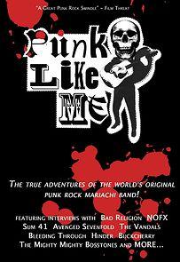 Punk Like Me
