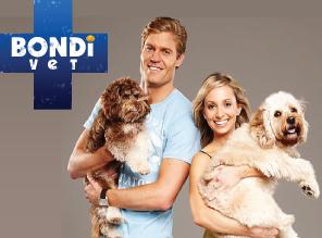 Bondi Vet: Season 7