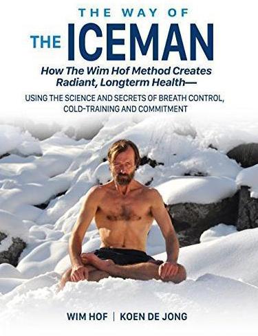 Iceman (2015)
