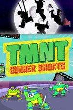 Tmnt Summer Shorts: Season 1