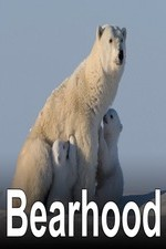 Bearhood