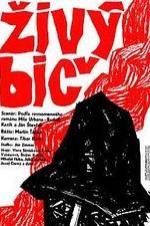 Zivy Bic
