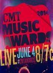 2014 Cmt Music Awards