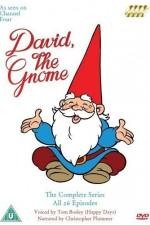 David El Gnomo: Season 1