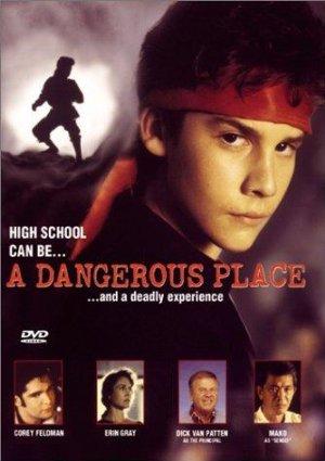 A Dangerous Place 1994