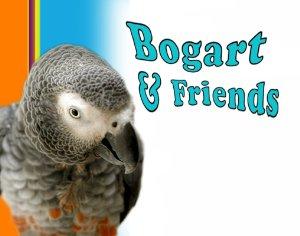 Bogart & Friends