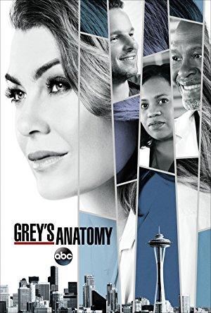 Grey's Anatomy: Season 14