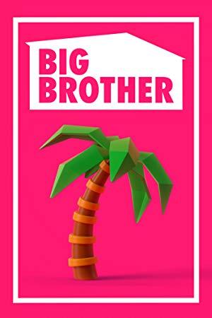 Big Brother (us): Season 21