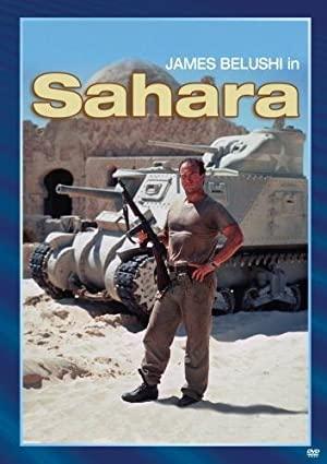 Sahara 1995