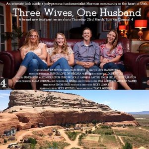Three Wives One Husband: Season 1