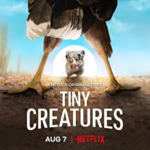 Tiny Creatures: Season 1