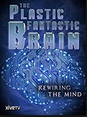 The Plastic Fantastic Brain