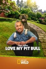 Cesar Millan: Love My Pit Bull