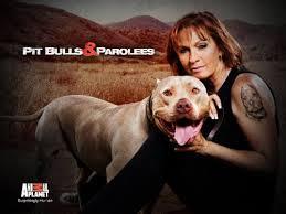 Pit Bulls And Parolees: Season 5