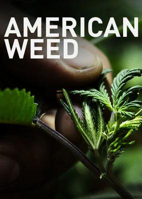 American Weed: Season 1
