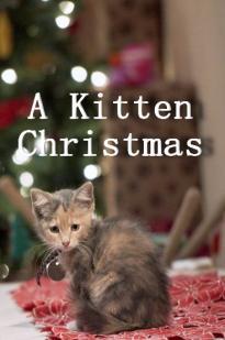 A Kitten Christmas