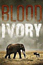 Blood Ivory: Season 1