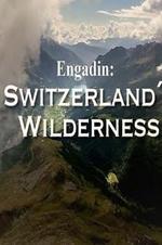 Engadin Switzerland's Wilderness