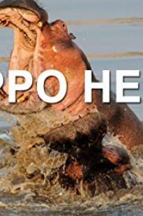 Hippo Hell