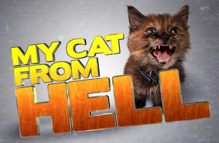 My Cat From Hell: Season 7