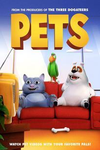 Pets 2020