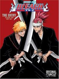Bleach: Season 5
