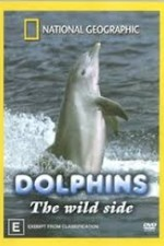 Dolphins: The Wild Side