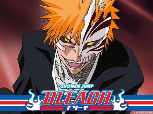 Bleach: Season 9